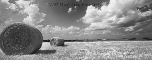 A Summer-time field feature's Wisconsin's farms iconic hay bales.