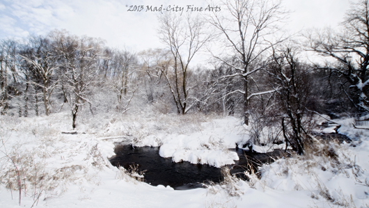 A winter landscape features this river near Elkhorn, WI